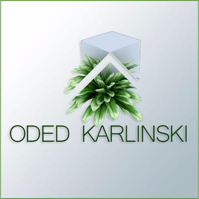 ODEDKARLINSKI Profile Image
