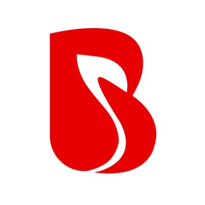 BrainMobi - App Development Company Profile Image