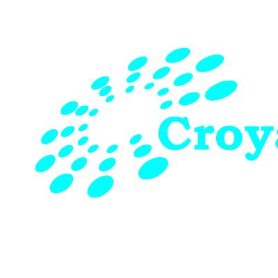 Croyant S/W Technologies Profile Image